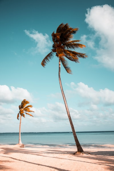 When you need to find a hotel near the beach, ramada hotels are your best bet